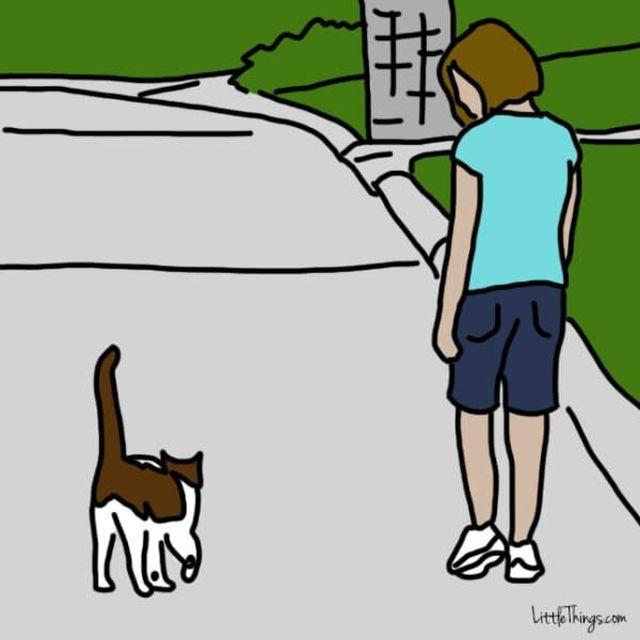 ネコ「10の愛情表現」